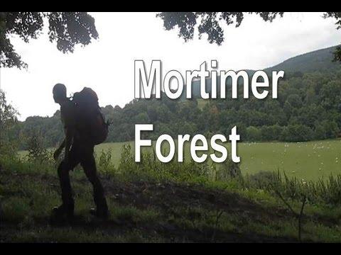 Mortimer Forest