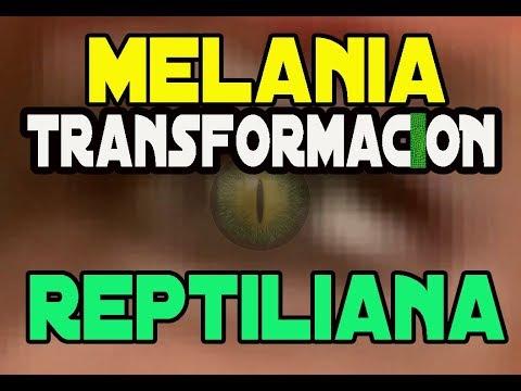 Transformación Reptiliana Melania Trump + Family Pecaos