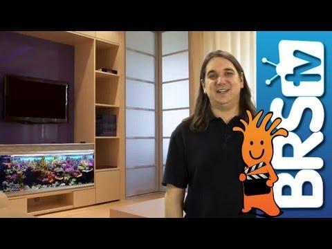 Aquarium Type, Size, Sump & Location - EP 2: Saltwater Aquarium Basics