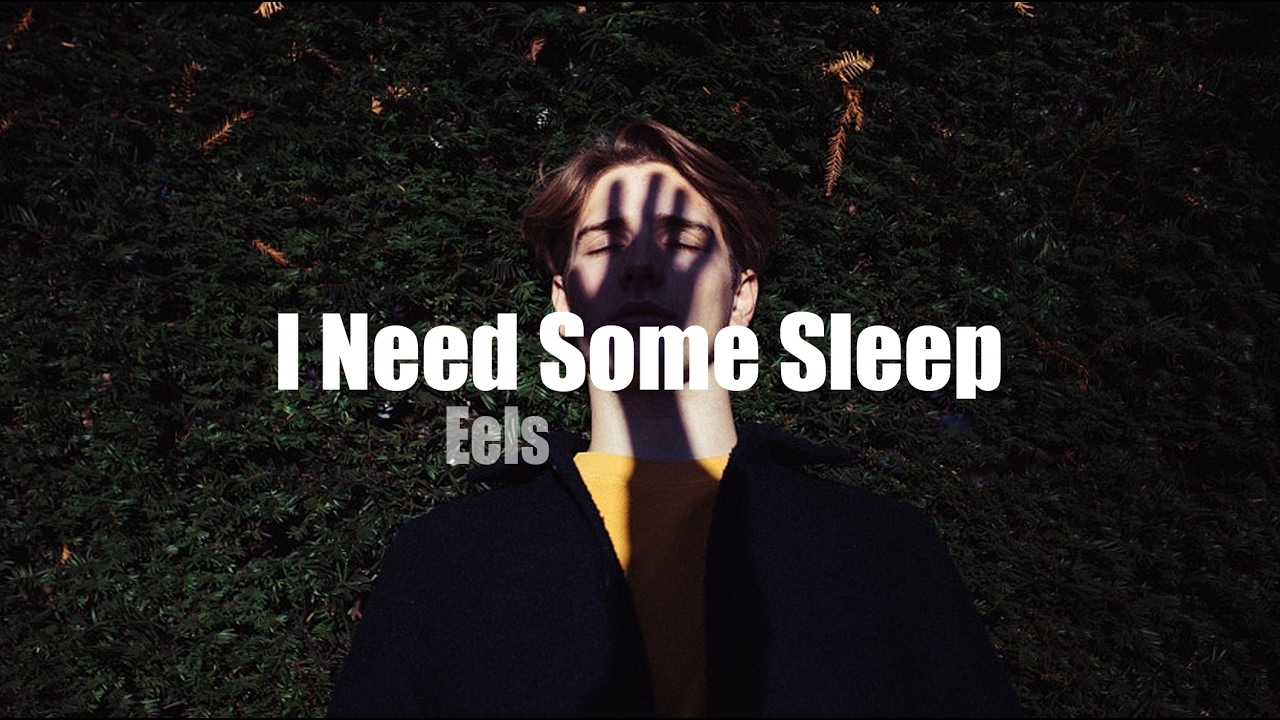 Eels I Need Some Sleep Youtube