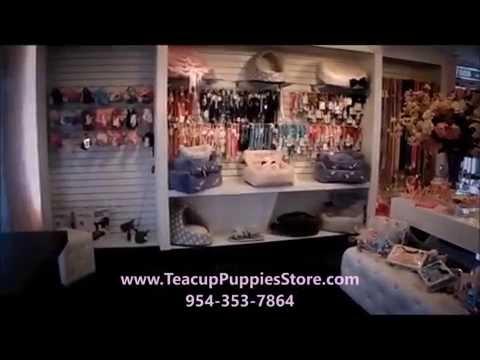 Puppy Boutique Store - Pet Supplies 2016 WE SHIP