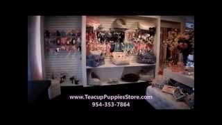 Puppy Boutique Store - Pet Supplies