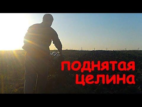 Объявления о продаже кормов для собак и кошек, домиков и переносок раздела товары для животных в россии на avito.