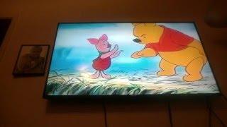 Winnie the Pooh In School lesson program