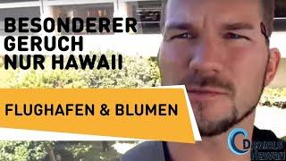Hawaii USA Reise Tipps - Geheimtipp am Flughafen Honolulu. Ein besonderer Ort!