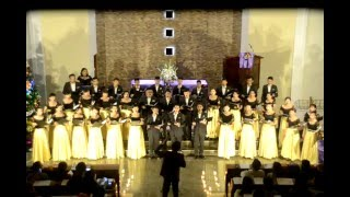 Hallelujah Amen - HKBP Beringin Indah Youth Choir