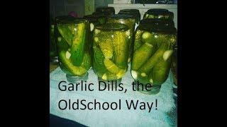 Canning Garlic Dills, the old school way!