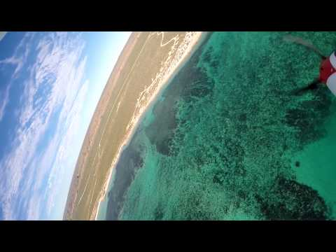 GoPro falls into the ocean, captures incredible footage of marine life