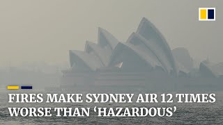 Sydney air quality 12 times worse than 'hazardous' level as Australian bush fires rage on