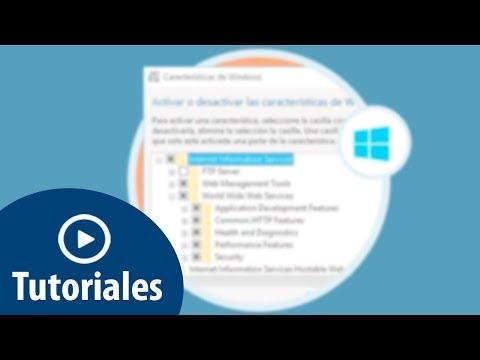 Cómo instalar IIS en Windows 10