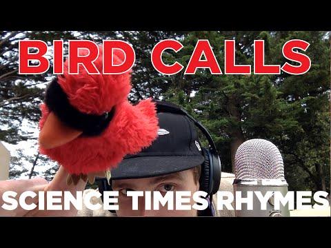 Science × Rhymes (#7) Bird Calls