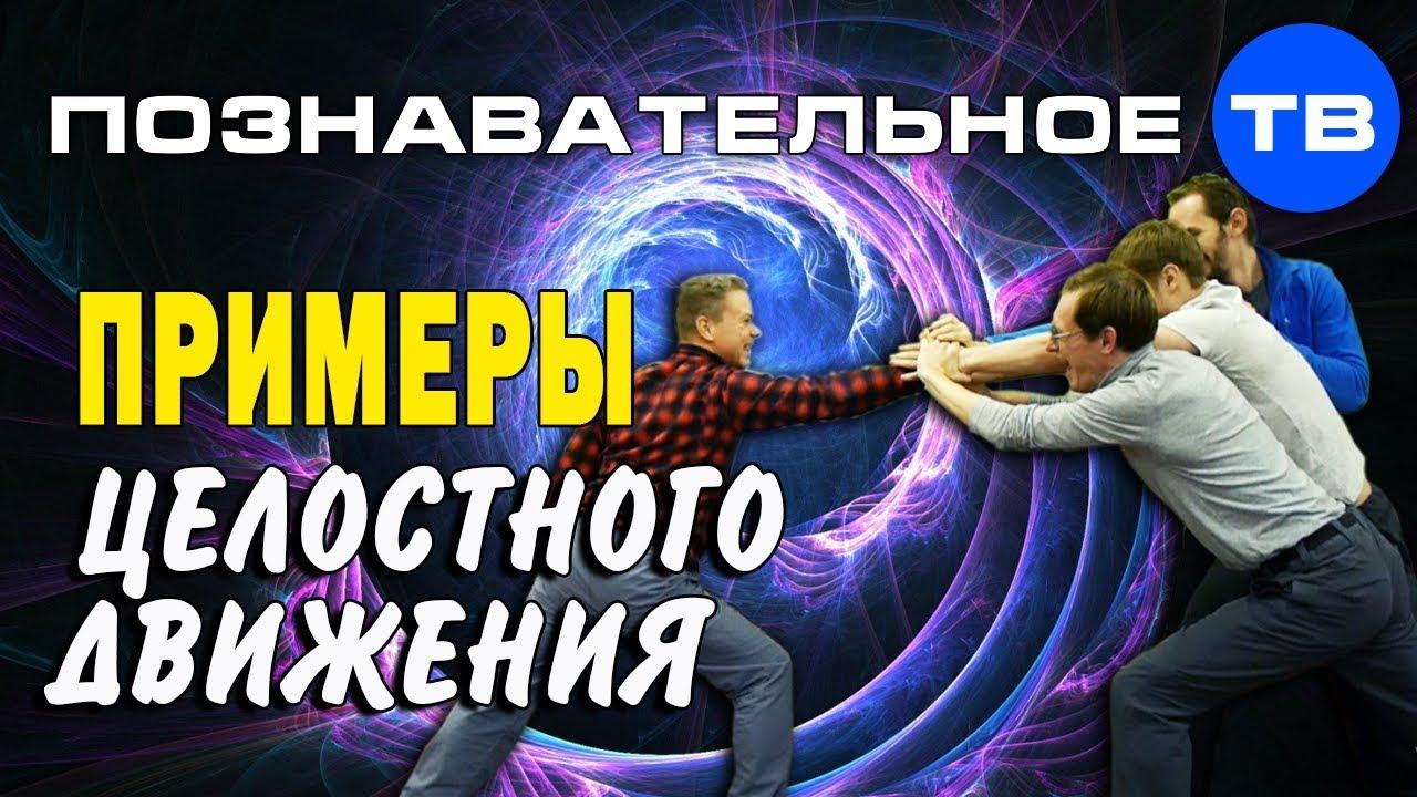 Примеры целостного движения (Познавательное ТВ, Евгений Беляков)