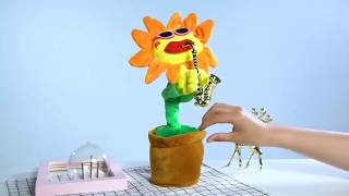 Video: Cute Musical Sun Flower Soft Plush Dancing & Singing Toy