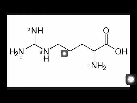 HOW TO FIND MOST BASIC N ATOM IN ARGININE