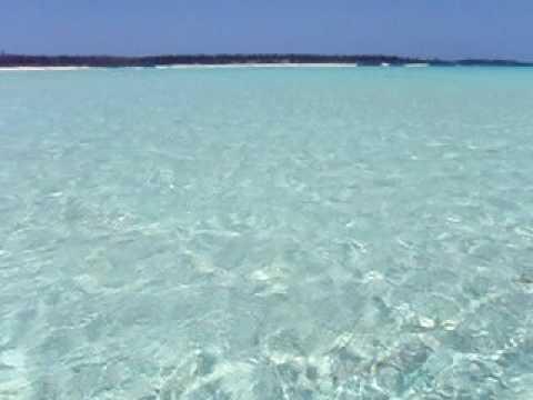 百合ヶ浜。天然のプール
