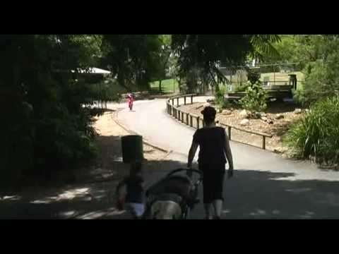 Lone Pine Koala Sanctuary Pt2of3 (New Years Day 2009)