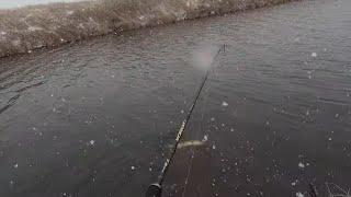 Ловля щуки перед запретом ВЕСНА Рыбалка в МАРТЕ