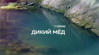 Культурный сезон - Дикий Мёд (Часть I)