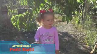 Вареники с вишней от Кати Детское видео