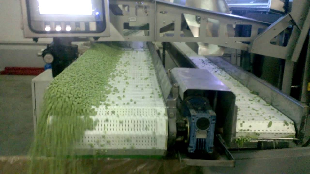 Pea sorting machine Blizzard - TOMRA Sorting