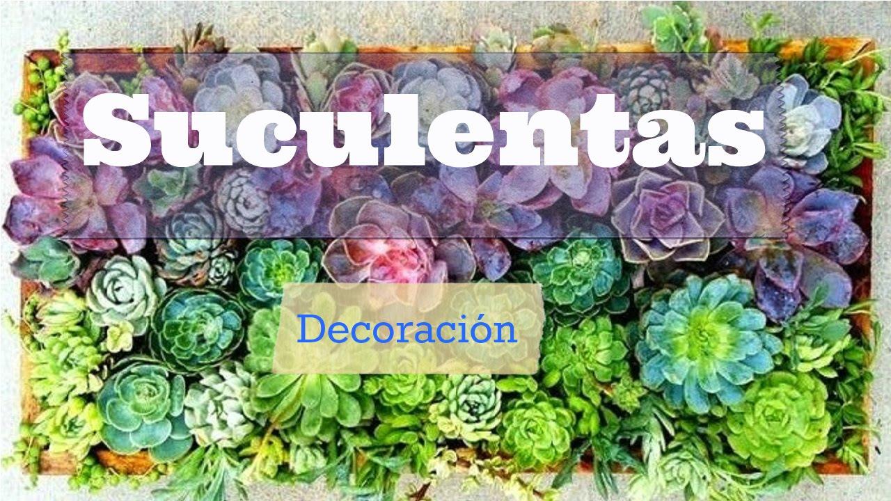 Sembrar y decorar con suculentas o carasas jardines for Como criar caracoles de jardin