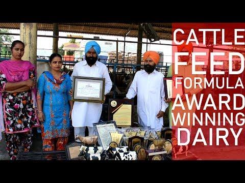 Cattle Feed Formula By Barar Dairy Farm Punjab