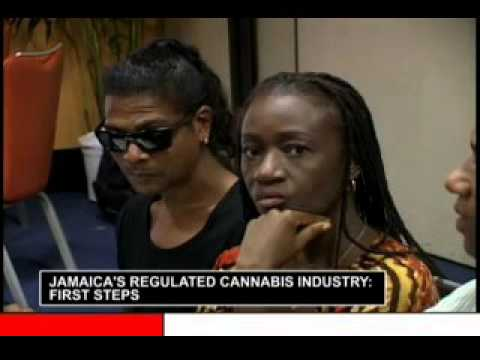 Jamaica's Regulated Cannabis Industry 2days Conference prt 2
