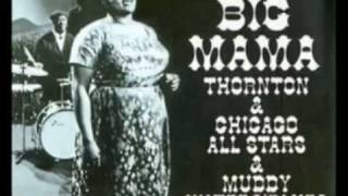 Big Mama Thornton With The Muddy Waters Blues Band - Since I Fell For You