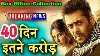 Tiger Zinda Hai 41 Days Collection | Worldwide Box Office | Salman Khan