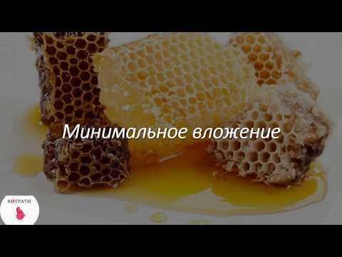 Бизнес план . Пчеловодство как бизнес. Выгодно ли? Бизнес на селе