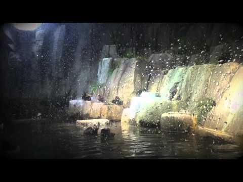 Omaha zoo trip by Wah wah