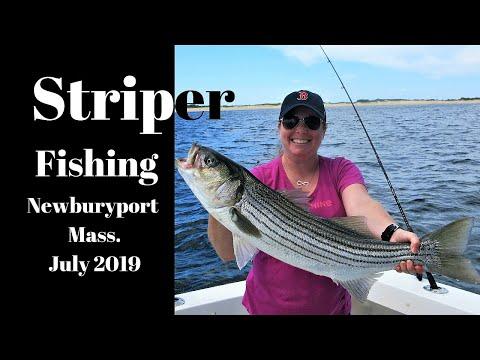 Newburyport Striper Fishing July 2019