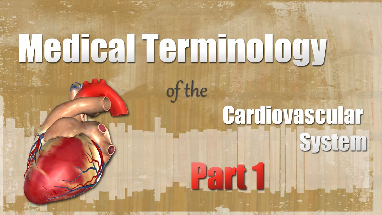 Medical Terminology Of The Cardiovascular System Pt 1 Youtube