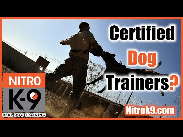 Trainer certifications — what should you look for? (podcast)