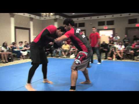 The Ultimate Absolute: Vinny Magalhaes X Daniel Gracie