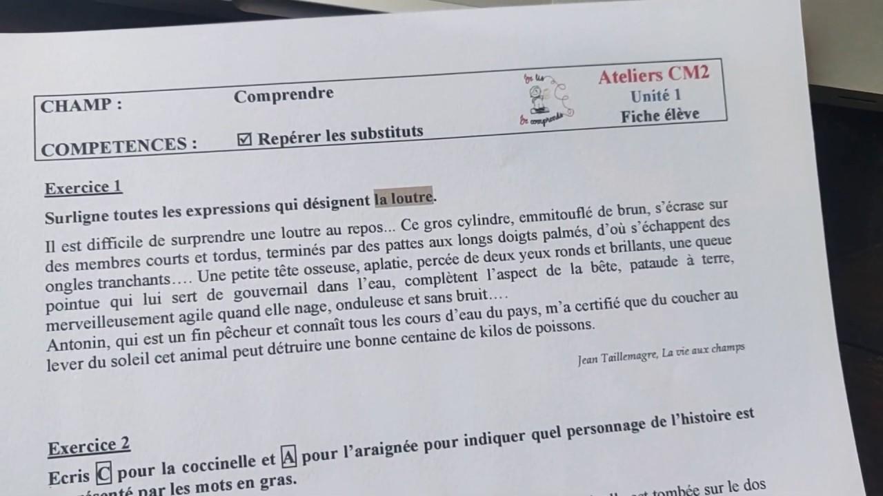 Atelier De Lecture Cm2 Correction Youtube