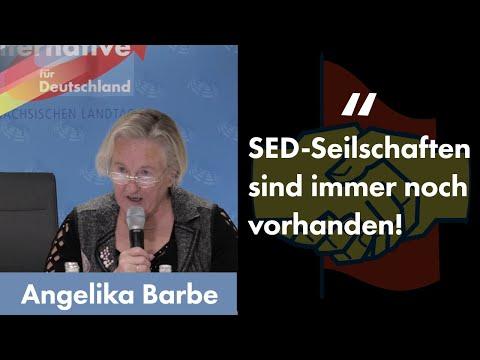 SED-Seilschaften sind noch vorhanden! Angelika Barbe zu Gast bei Fraktion im Dialog.