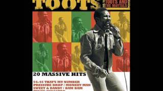 toots and the maytals time tough