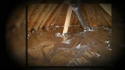 Attic Insulation Jacksonville FL