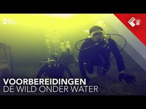 Het team van De Wild Onder Water haalt hun Padi | NPO Radio 2
