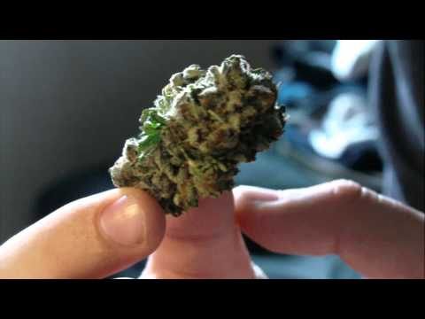 Platinum Bubba Strain Review
