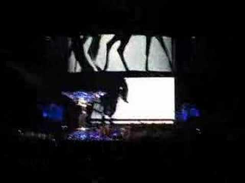 Future Lovers/IFL Video Screens