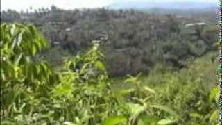Batanghari Sembilan - Gitar Tunggal - Hindu Bejulat - cipt Zainal - voc Amran Cs - guitar Amran Cs