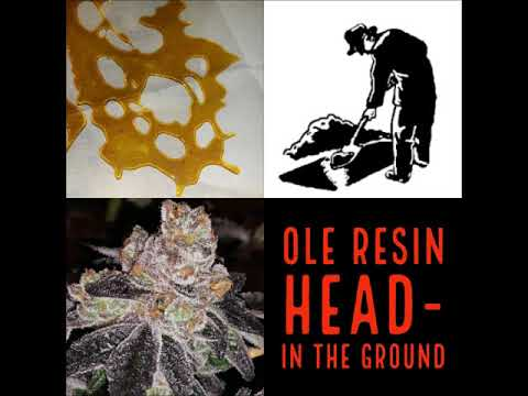 Ole Resin Head- In The Ground