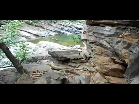 Panchalingeswar, Nilgiri, Chandipur, Kuldiha Forest, Devkund. -Part 34