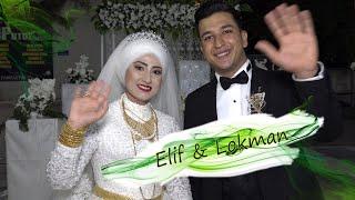 Kilis'in Saygın İş Adamı Mehmet Porsuğun Oğlunun Düğünü (Elif & Lokman) GRUP ŞEN GÜNEY KAMERA