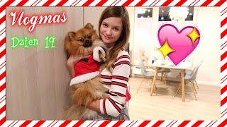 VLOGMAS #19 : Nowe ubranka Yogiego, kupuję prezent | Cookie Mint