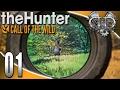 theHunter: Call of the Wild Gameplay :EP1: Black Bear Hunting! (PC Hunting Simulator)