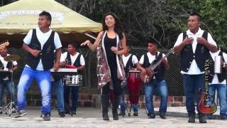 SOLO PIENSO EN TI SON DE ORO DE COLOMBIA