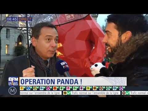 BFM Paris Operation Panda Mercredi 13 janvier 2017